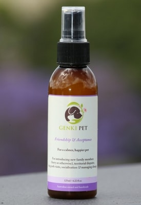 Bottle of Pet Product Friendship&Acceptance