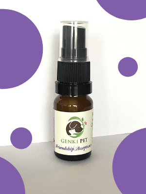 Friendship & Acceptance 12ml Genki Pet For confident socialisation; relieving anxiety and reactivity