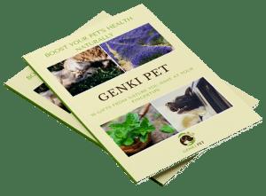 Genki-Pet-Brochure_Mockup