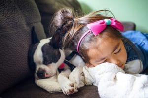 cute dog and girl relaxing asleep calm and peaceful on couch