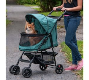 genki pet healthier happier pets and their people dog in pram pushed by woman